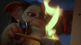 【映画グレムリン】ギズモ(モグワイ)の可愛い画像【キャラクター】 萌え